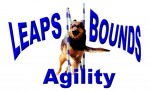 Leaps N Bounds Agility