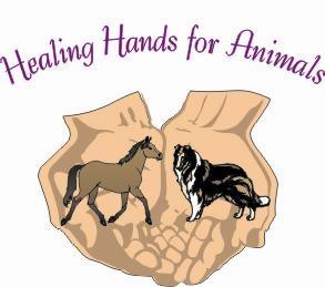 Healing Hands For Animals