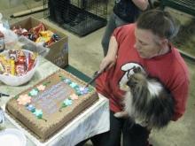 A Cake for Seanna and Dart!