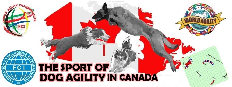 The Sport of Dog Agility in Canada